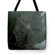 Db6325-dc Spiderweb On Sonoma Mountain Tote Bag