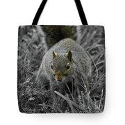 Dc Squirrel Tote Bag
