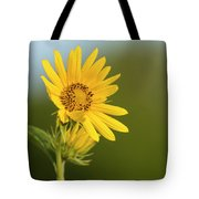 Ddp Djd Sunflower 2639 Tote Bag
