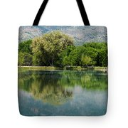 Dead Horse Ranch State Park Tote Bag