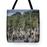 Dead Lakes Cypress Stumps Tote Bag