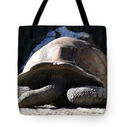 Dead Tired Tote Bag