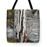 Dead Tree Above Tree Line I Tote Bag