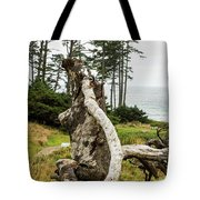 Dead Tree At Ecola Park Tote Bag