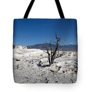 Dead Tree In Yellowstone Park Hot Springs  Tote Bag