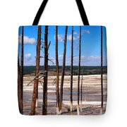 Dead Trees Standing In Hot Springs Within Yellowstone National P Tote Bag
