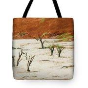 Dead Vlei Namibia Tote Bag