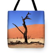 Dead Vlei Tree  Tote Bag by Aidan Moran