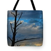 Dead With Color Tote Bag