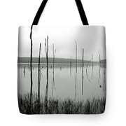 Deadman's Cove 1 Tote Bag