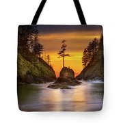 Deadman's Cove At Cape Disappointment State Park Tote Bag
