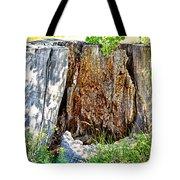 Deadwood On Cherry Creek Trail 3 Tote Bag