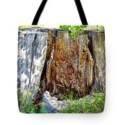 Deadwood On Cherry Creek Trail 3 Tote Bag