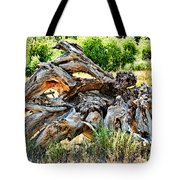 Deadwood On Cherry Creek Trail 4 Tote Bag