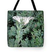 Dear Butterfly  Tote Bag