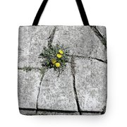 Death Begets Life Tote Bag
