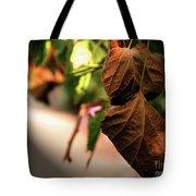Death Is Beautiful Tote Bag