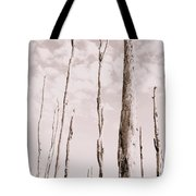 Death Of A Forest Tote Bag
