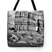Death On Notom-bullfrog Road - Capitol Reef - Bw Tote Bag