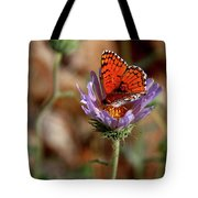 Death Valley Butterfly Tote Bag