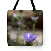 Death Valley Lavenders Tote Bag