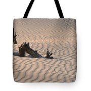 Death Valley Morning Tote Bag by Sandra Bronstein