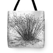 Death Valley National Park - Hot - Dry - Beautiful Tote Bag