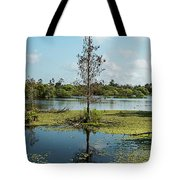 Death Within Tote Bag