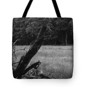 Debris Black And White Tote Bag