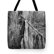 Decayed Stump Tote Bag