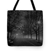 December Morning In Riverfront Park - Spokane Washington Tote Bag