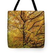 Deciduous Forest In The Autumn Tote Bag