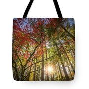 Decorated By Japanese Maple Tote Bag