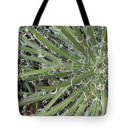 Decorations Tote Bag