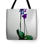 Decorative Orchid Photo A6517 Tote Bag