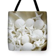 Decorative Seashells Tote Bag by Kyle Rothenborg - Printscapes