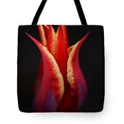 Decorative Tulip Tote Bag