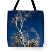 Deep Blue White Tree Tote Bag