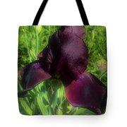 Deep Burgundy Iris Tote Bag