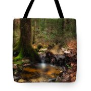 Deep Forest Creek Tote Bag
