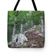 Deep Forest Rocky Path Nature Tote Bag
