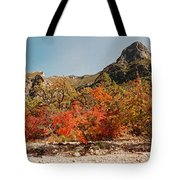 Deep In Mckittrick Canyon - Lost Maples And Ponderosa Pines Against Backdrop Of Guadalupe Mountains  Tote Bag