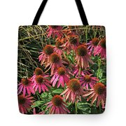 Deep Pink Echinacea Straw Flowers Green Leaf And Grass Background 2 9132017 Tote Bag