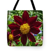 Deep Red And Yellow Flowers Tote Bag
