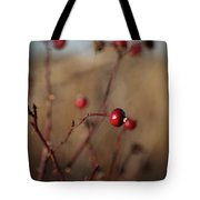 Deep Red Rose Hips On Brown And Blue Tote Bag