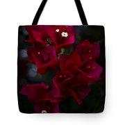 Deep Scarlet Glabra Tote Bag