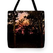 Deep Song, Like A Nightingale In Mourning Tote Bag