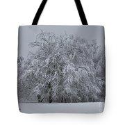 Deep Winter Tote Bag