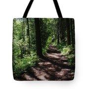 Deep Woods Road Tote Bag