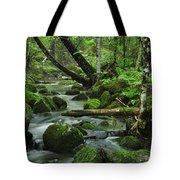Deep Woods Stream Tote Bag